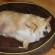 παχυσαρκία σκύλου