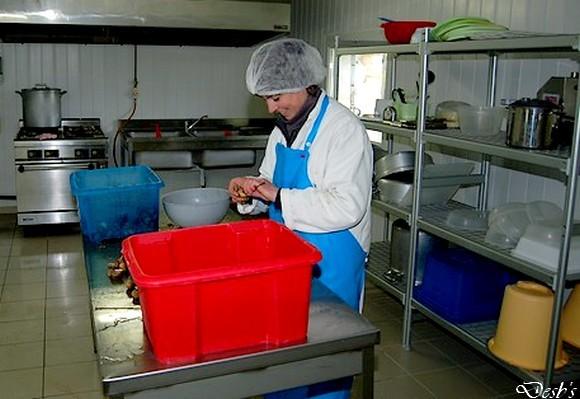 Πάγκος εργασίας για επεξεργασία εδώδιμων σαλιγκαριών