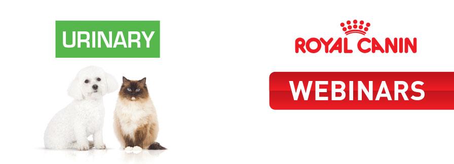 Σεμινάρια Ουρολογίας Σκύλου και Γάτας