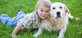 αλλεργία στα παιδιά από σκύλος και γάτα crop-compressed